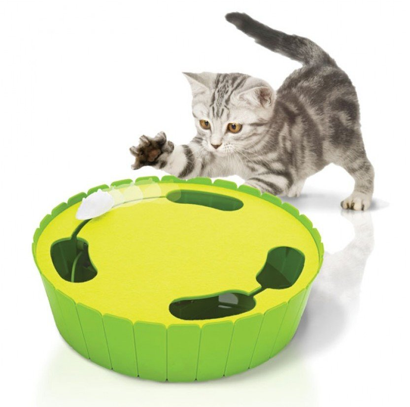 5 Electronic Cat Toys That Will Drive Your Kitty Crazy