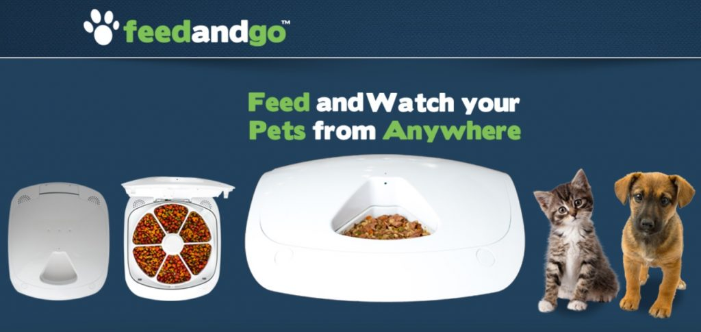 feed and go smart pet feeder review