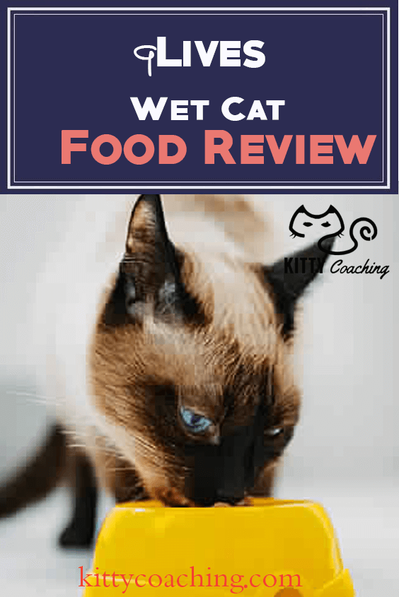 9Lives Wet Cat Food Review