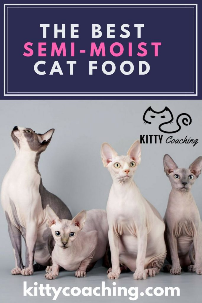 what's the best semi moist cat food