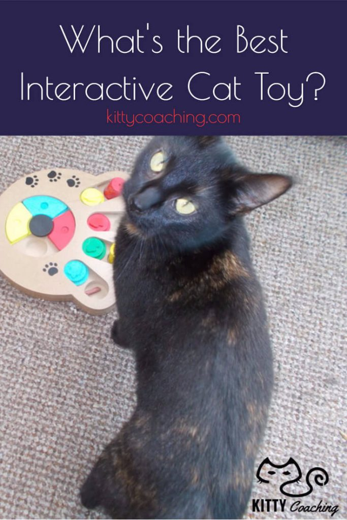 best-interactive-cat-toy