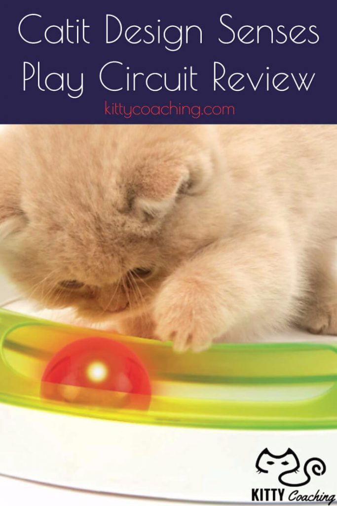 Catit Design Senses Play Circuit Review